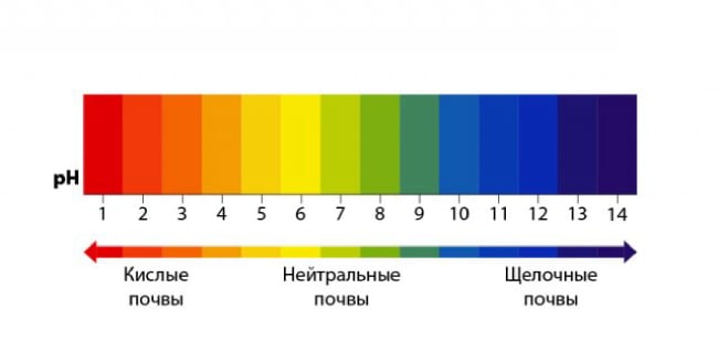 Шкала pH грунта